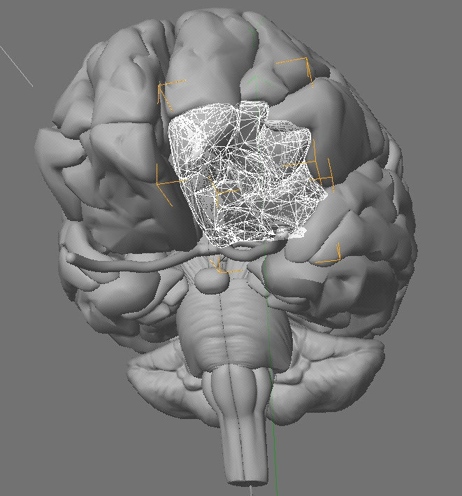 brain_wireframe.jpg